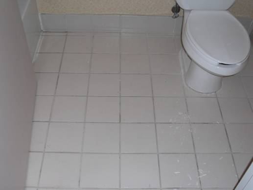 03 011 Homepage   Grout Stain and Tile Products